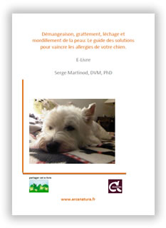 Dossier coprophagie du chien