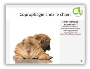 Webinar coprophagie chien