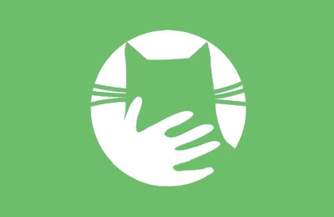 comprendre et prendre soin de son chat